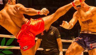 Truyện cười võ thuật ba lần kungfu Trung Quốc thách đấu muay Thái